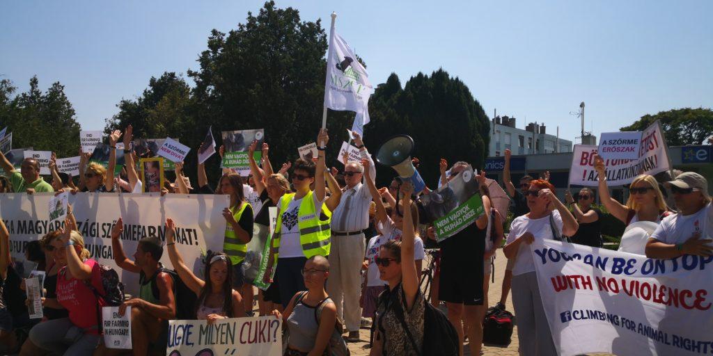 Szőrmeellenes tüntetők együtt kiáltanak