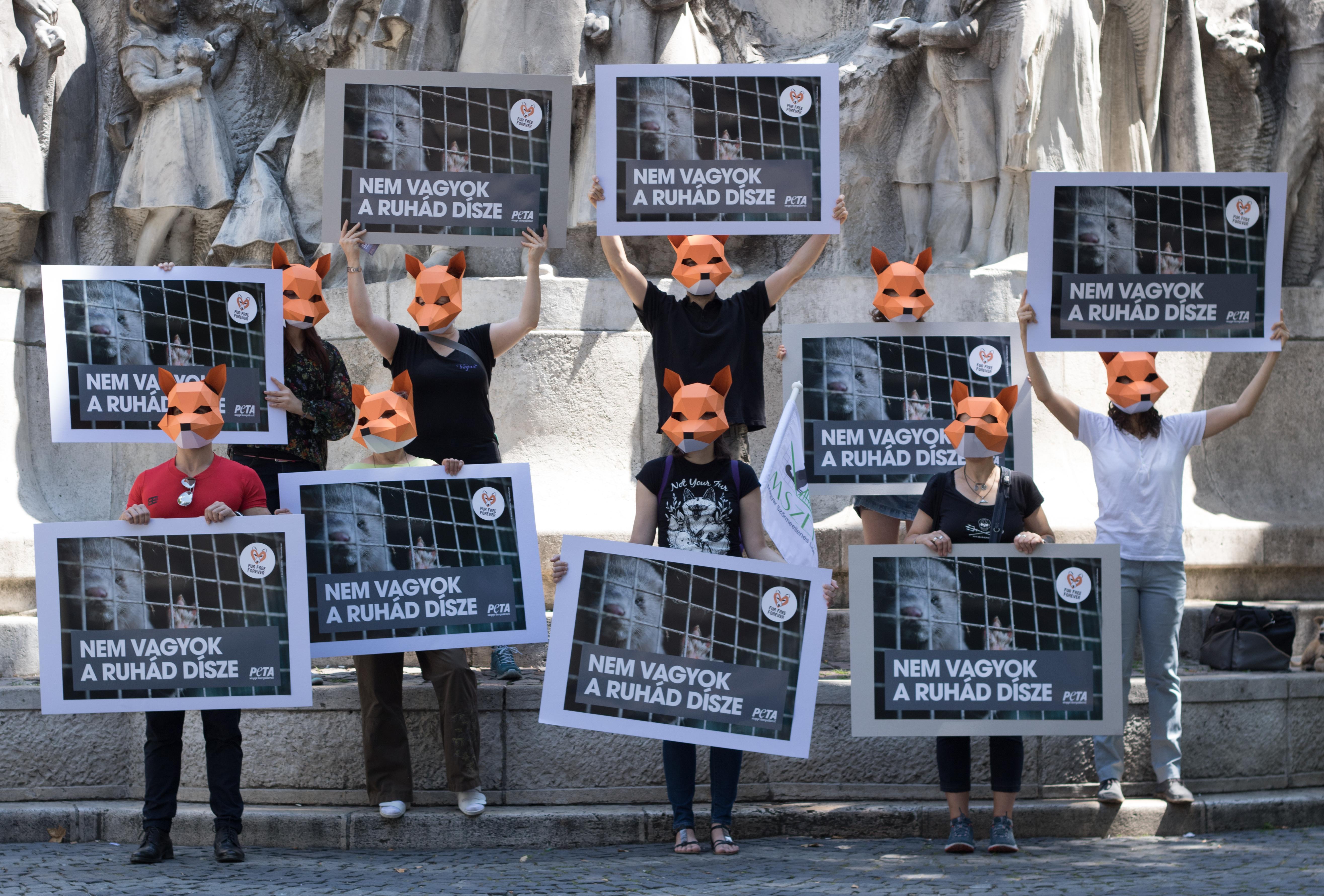Szőrme ellenes tüntetők táblákkal